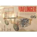 Haflinger Prospekt 4 farbig DIN A2