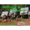 Haflinger - Pinzgauer Kalender 2009
