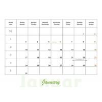 Haflinger - Pinzgauer Kalender 2011